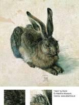 Durer-Hare
